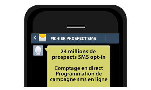 SMS Marketing, Fichier SMS